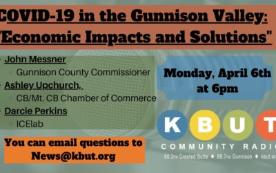COVID19 in the Gunnison Valley: Economic Impacts and Solutions.