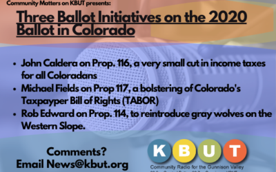 Community Matters: Three Ballot Initiatives on the November Ballot