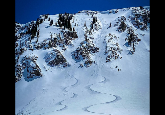 Avalanche Center Preps for Big Wave of New Users